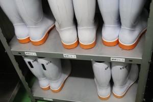 工場見学長靴