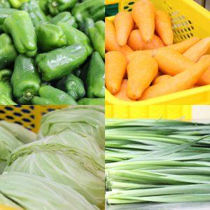 カット野菜たち