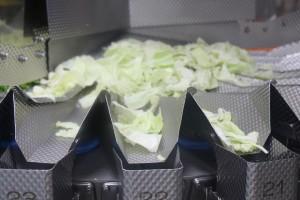 工場見学カット野菜計量器