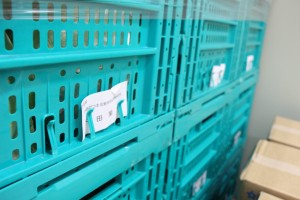 工場見学カット野菜の産地から野菜入荷