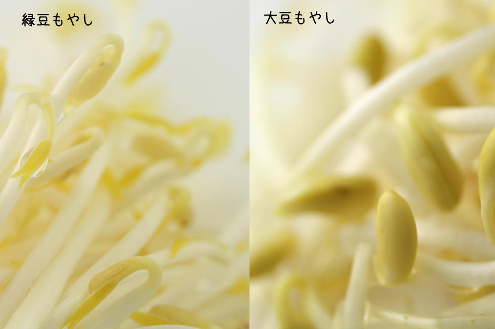 ryokuto-kodaizu