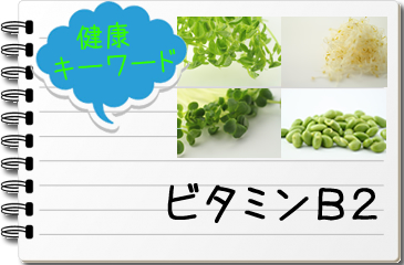 B2 食品 ビタミン
