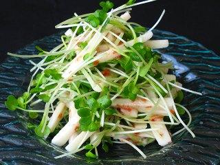 スプラウトレシピ 発芽野菜