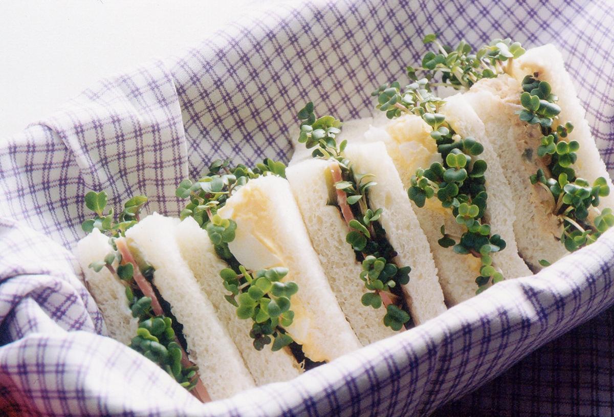 ブロッコリーの新芽 サンドイッチ