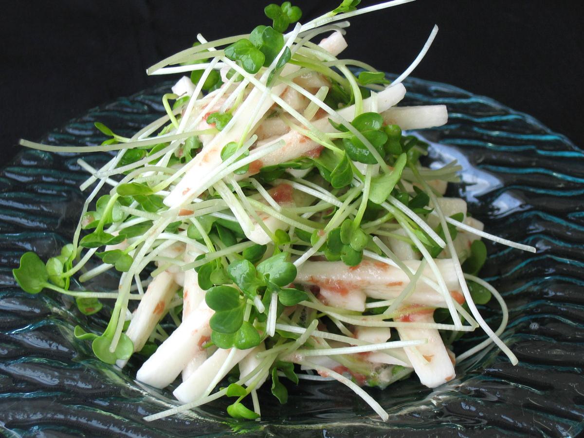 かいわれ大根とにんじんの梅肉サラダ